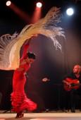 Rasanter Tanzabend: Am Sonntagabend brachten beim Internationalen tanzfestival Ingolstadt Flamenco-Profis die neun gehörig ins Wanken. Das Publikum war begeistert.